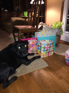 Kobe protects the presents